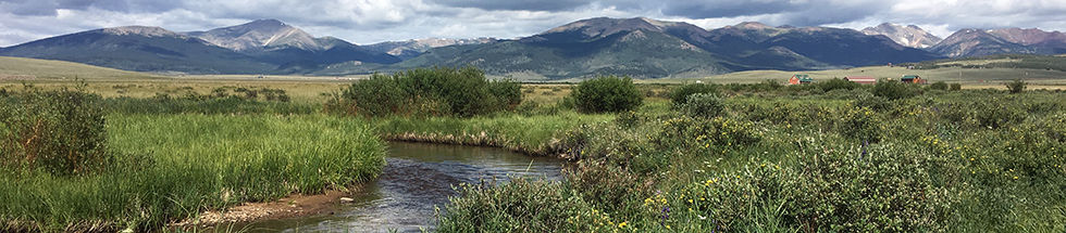 Michigan Creek Colorado 1706.jpg