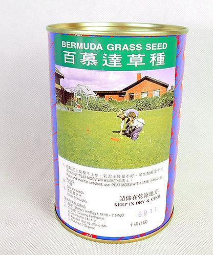 Bermuda grass seed