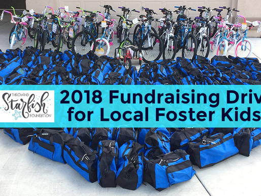 Our 2018 Fundraising Drive!