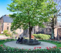Jardin du Maïeur.jpg