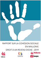 RapportWallonie_2.PNG