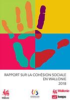 RapportWallonie_1.PNG