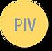 PIV.png