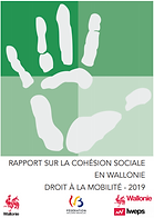 RapportWallonie_3.PNG