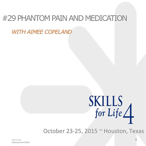 2015 SFL4 #29: Phantom Pain and Meditation