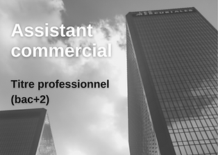 Assistant commercial.png
