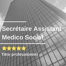 Secrétaire Assistant Medico Social.png