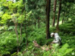 新潟 山北 さんぽく マタギ文化