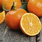 3155550-img-nemoc-pomeranc-jidlo-v0.jpg