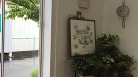 Blooming サロンギャラリー