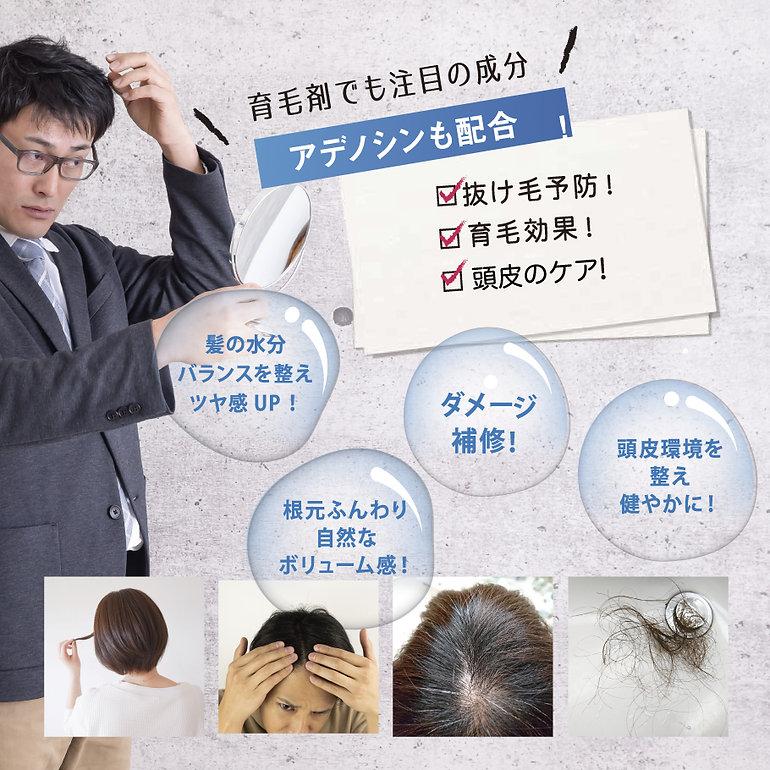 scalp_04.jpg