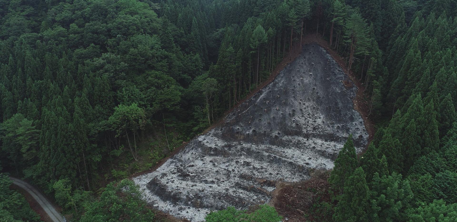 新潟 山北 山焼き