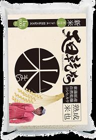 東蒲原産自然乾燥はさがけコシヒカリ渡辺崇さん
