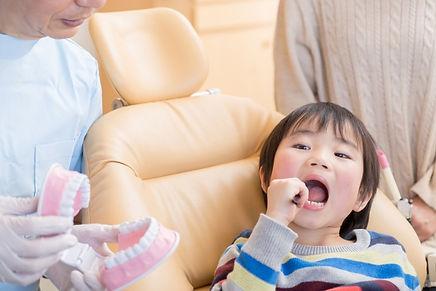 山崎歯科医院 新潟市 中央区 歯医者 歯科 メンテナンス