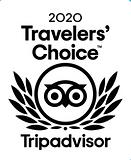 tripadvisor catamaran