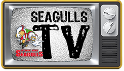 SeagullsTVsmall1noant.png