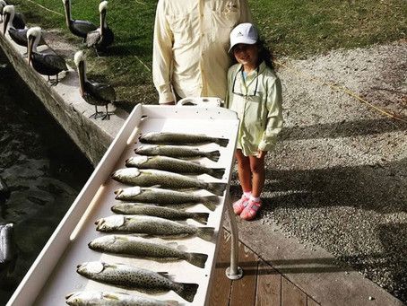 Crystal River Fishing Report - 12.29.19