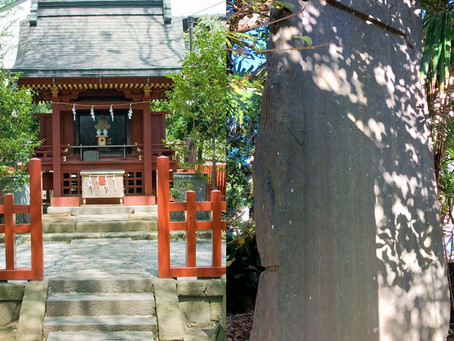 元八幡 Mototsurugaoka Hachiman-gū