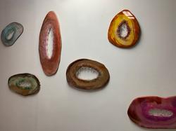 Vageodes Exhibition