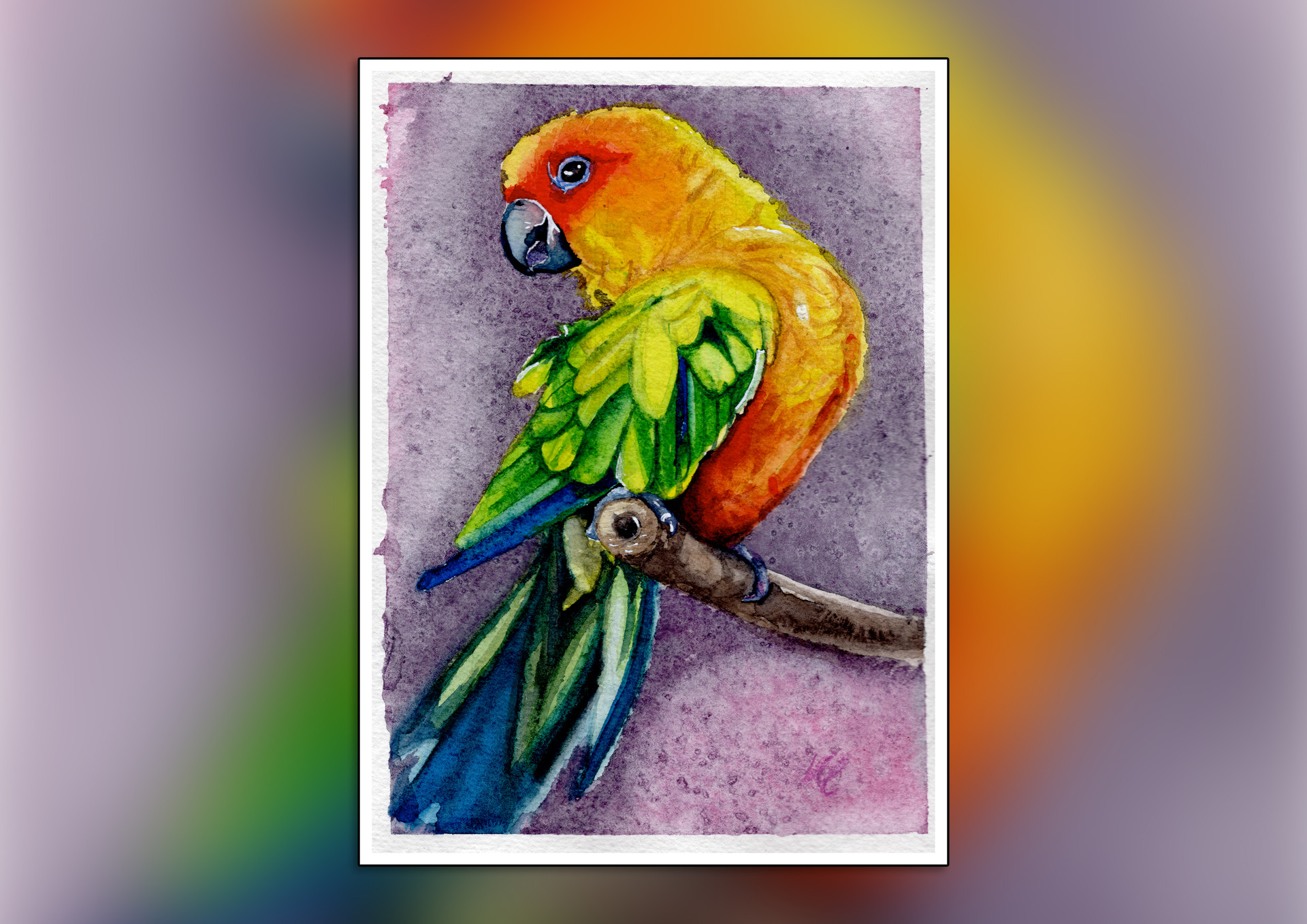 Parrot Watercolour