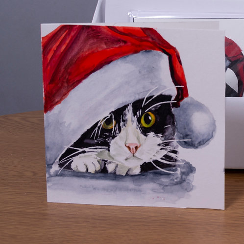 Black & White kitten with Santa hat, Christmas card 5x5 inch