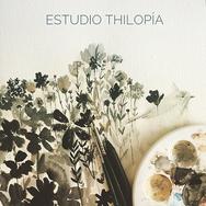 pajarito estudio thilopia