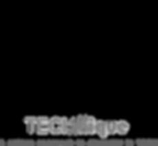 NEW tech-nique logo1.png