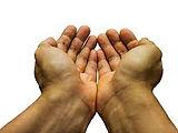 open palms.jpg