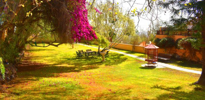 Luxury villa in Tenerife, the garden.jpg