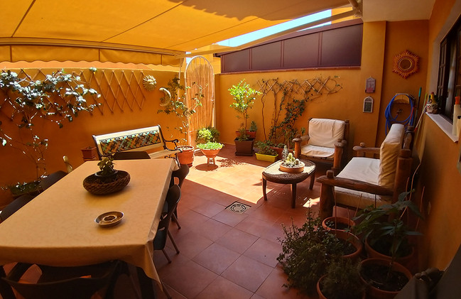 The rear terrace with total privacy
