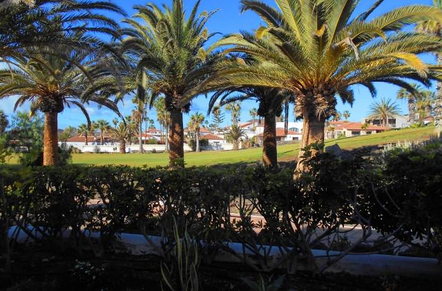 Vista campo da golf.jpg