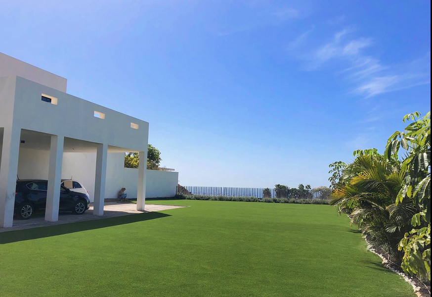 the lawn.jpg