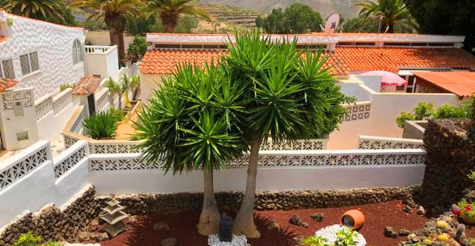 Low maintainance garden.jpg