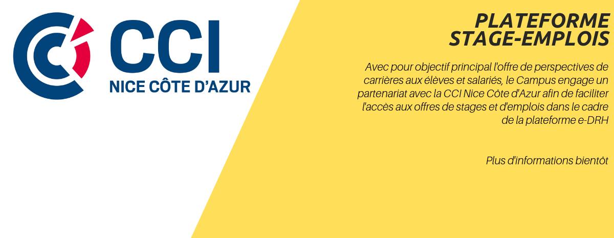 CCI e-DRH