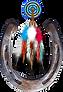 collage logo2.png