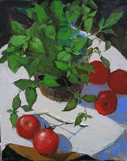 Tomatos & Basilikum