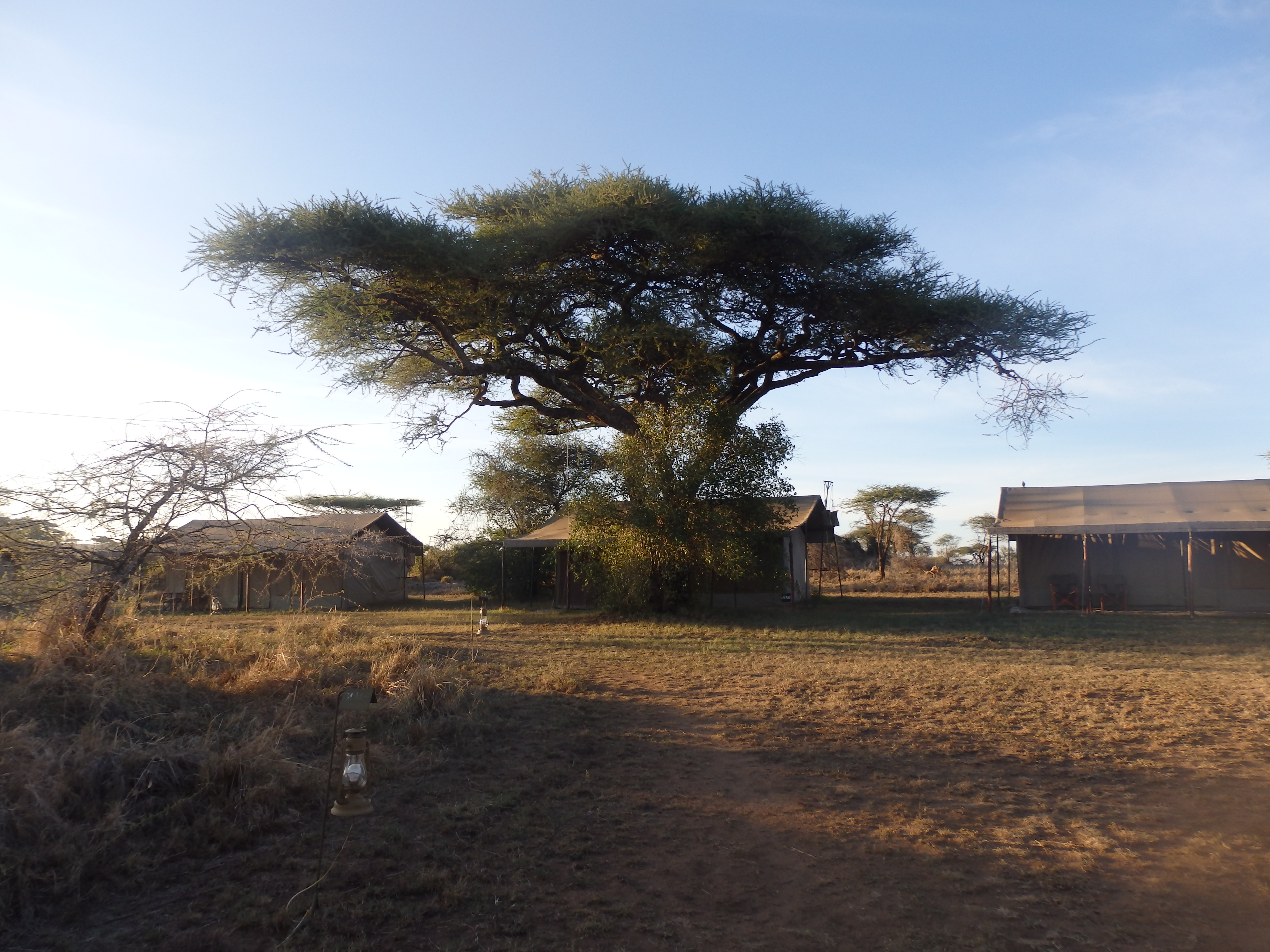 Kisura Tented Camp