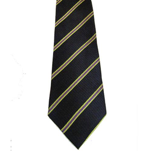 3rd Battalion Royal Anglian Regiment Silk Tie