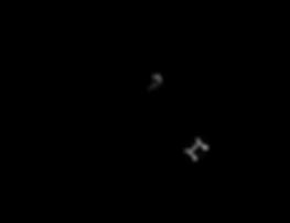 GTF_TurkeyFumble_Logo_19-01.png