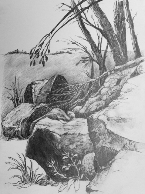 """Landscape"" and is graphite"