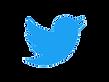 Twitter détouré 2.png