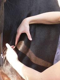 massage shoulder groove.JPG