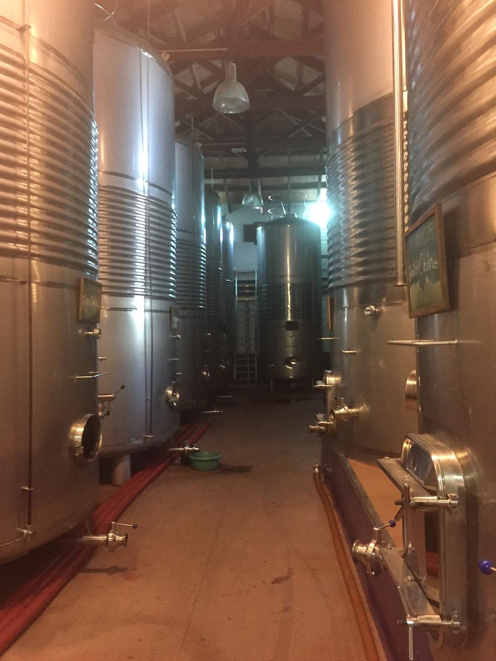 produção de vinho na região de Lá Mancha
