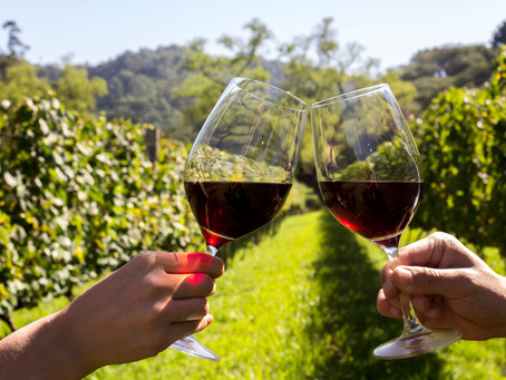 DEGUSTAÇÃO PREM1UM WINES - VINHOS DA ARGENTINA
