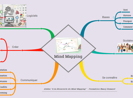 INSCRIPTION POUR L'ATELIER MIND MAPPING
