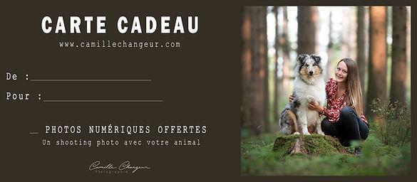 CARTE CADEAU - Camille Changeur Photographie