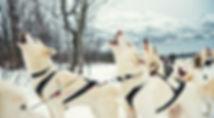 Praxis Ronnenberg | Coaching und Psychotherapie in Aachen mit Verena Ronnenberg | Beratung zu Hochsensibilität und Hochsensitivität | Zentrum für seelische Balance, Selbstwert und ein glückliches Leben!