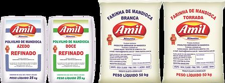 AMIL 2.png