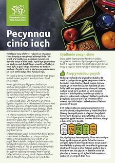 pecynnau-cinio-iach-taflen-page-001.jpg