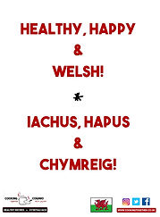 CT RECIPE PACKS - HEALTHY HAPPY AND WELS